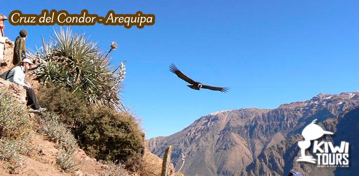 Arequipa – Cusco 6Días / 5Noches